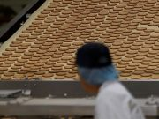 99014919 biscuits.factory.r