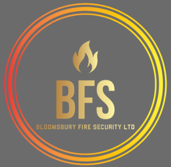 Bloomsbury-Fire-and-Security-Logo-Grey